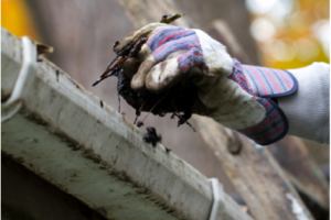 Cleaning Your Gutters Now Could Save Your Ceilings this Winter