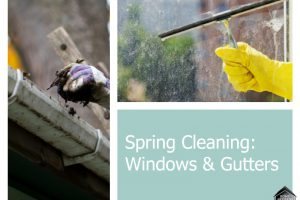 Spring Cleaning: Don't Forget Your Windows and Gutters!