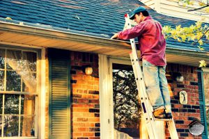Roof Maintenance Tips